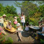 Viveca's Garden